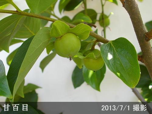 甘百目(あまひゃくめ)